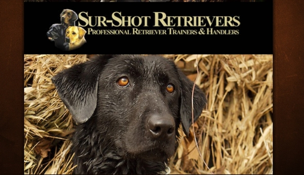 Sur Shot Retrievers