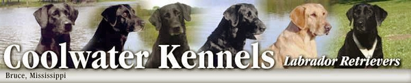 Coolwater Kennels